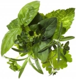 Image containing mixed herbs